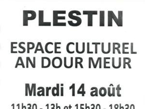 DON DE SANG LE 14/08 PLESTIN